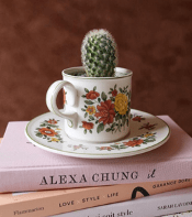 Upcycling the blond cactus blog hydrop