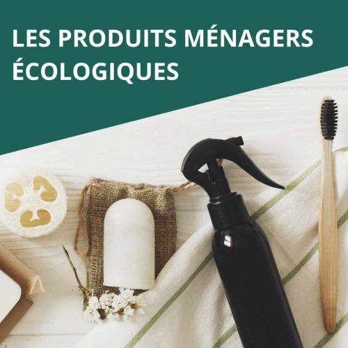 les produits ménagers bio maison hygiène propreté nettoyage entretien green